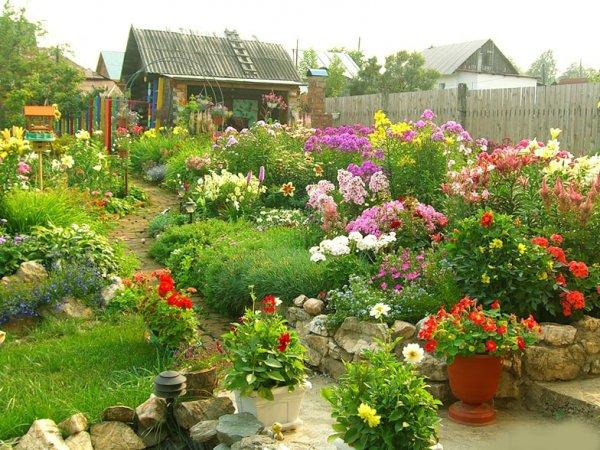 Цветы клумбы на даче своими руками